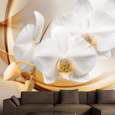 Fotomural - Orchid blossom
