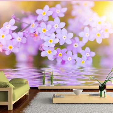 Fotomural -  Violet Petals...