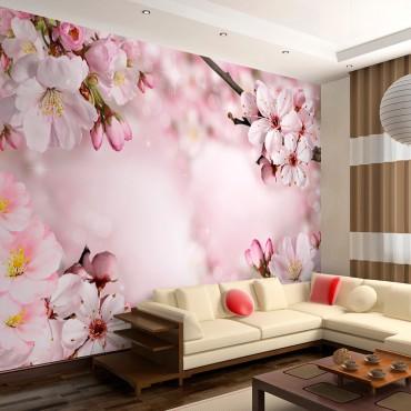 Fotomural - Spring Cherry...