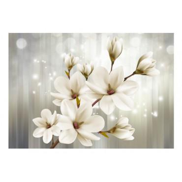 Fotomural - Flor de loto