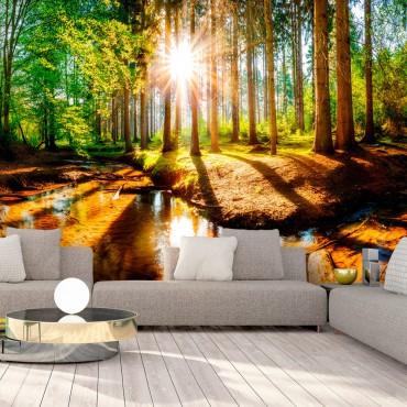 Fotomural - Marvelous Forest