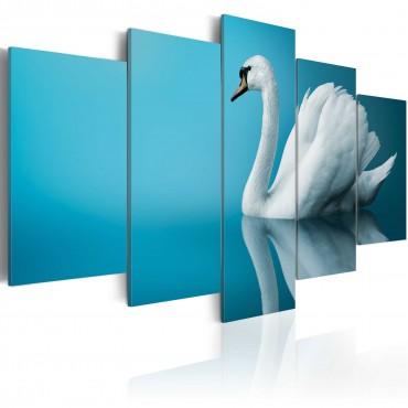 Cuadro - Un cisne en fondo...