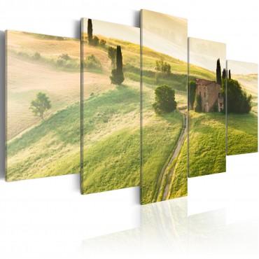 Cuadro - Toscana verde