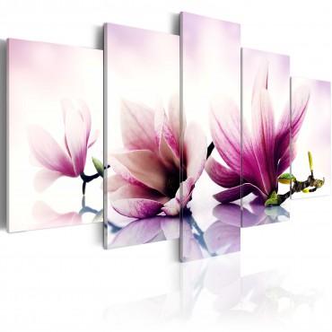 Cuadro - Flores rosadas:...