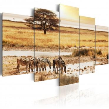 Cuadro - Zebras en una sabana