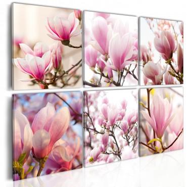 Cuadro - Las magnolias del sur