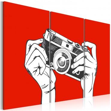 Cuadro - A photographer