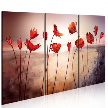 Cuadro - Bright red poppies
