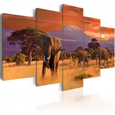 Cuadro - África: elefantes