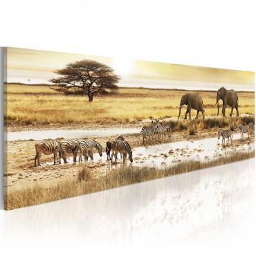 Cuadro - África: en el pozo...