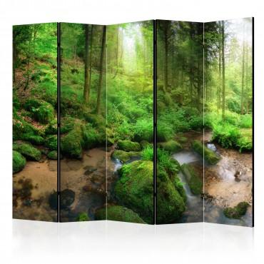 Biombo - Humid Forest II...