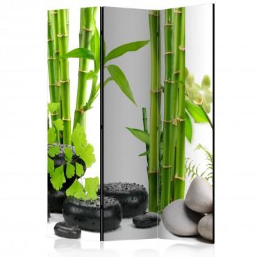 Biombo - Bamboos and Stones...
