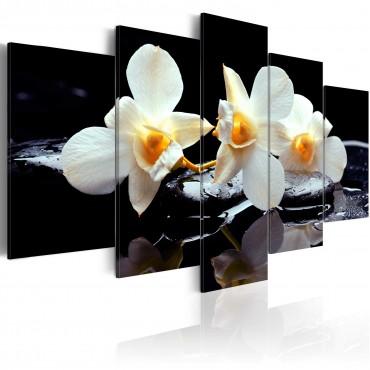 Cuadro - Orquídeas con un...