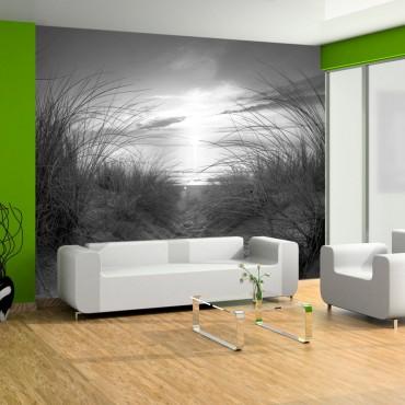 Fotomural - beach (black...
