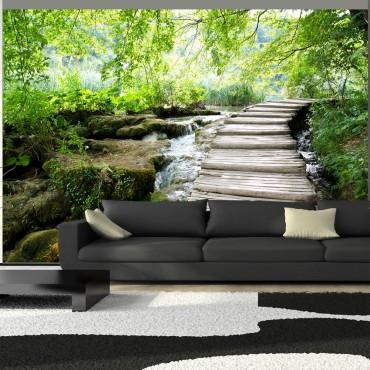 Fotomural - Camino forestal