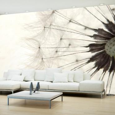 Fotomural - White Dandelion