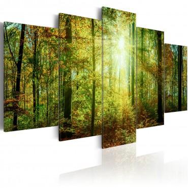 Cuadro - Wild Forest