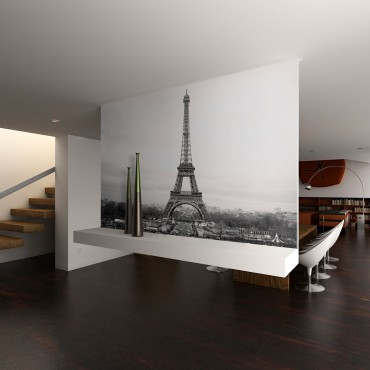 Fotomural - París:...