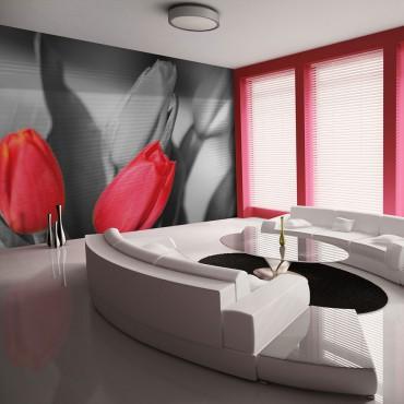 Fotomural - Tulipanes rojos...