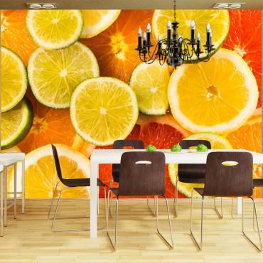Fotomural - Citrus fruits