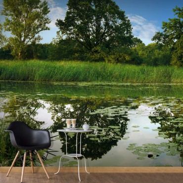 Fotomural - The Magic Pond