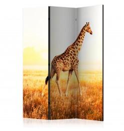 Biombo - giraffe - walk...