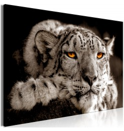 Cuadro - Magic Eyes (1...