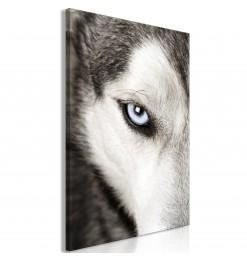 Cuadro - Dog's Look (1...
