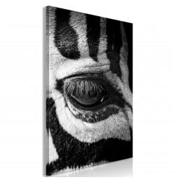 Cuadro - Zebra Eye (1 Part)...