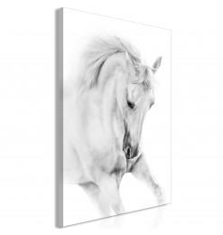 Cuadro - White Horse (1...