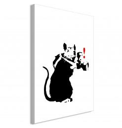 Cuadro - Rat Photographer...