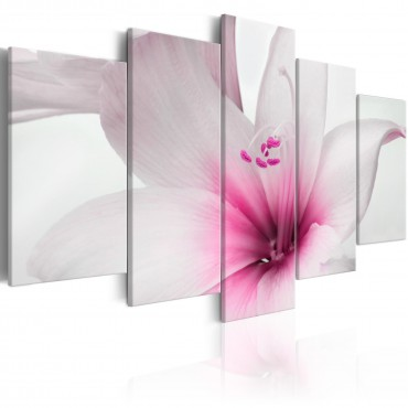 Cuadro - Amarylis: Pink Charm