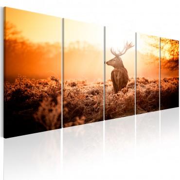 Cuadro - Deer at Sunset