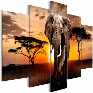 Cuadro - Wandering Elephant...