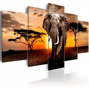 Cuadro - Elephant Migration