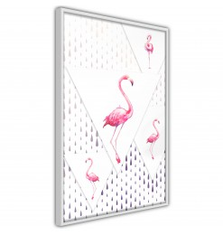 Póster - Flamingos and...