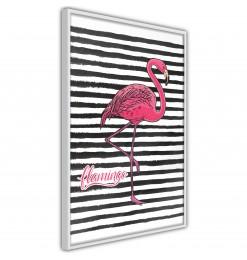Póster - Flamingo on...