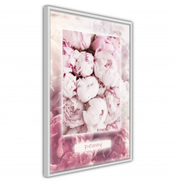Póster - Scent of Peonies