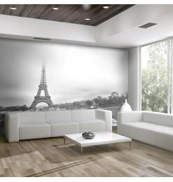 Fotomural - París: Torre...