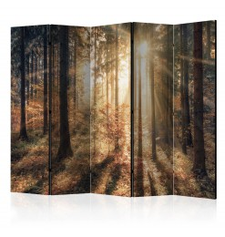 Cuadro - Camuflaje del bosque