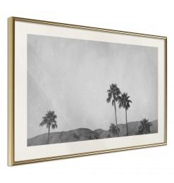 Póster - Sky of California
