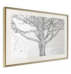 Póster - Tangled Branches