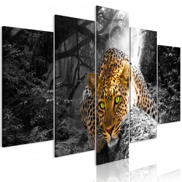 Cuadro - Leopard Lying (5...