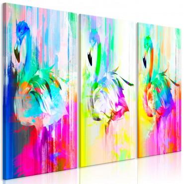 Cuadro - Colourful...