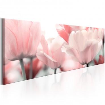 Cuadro - Pink Tulips