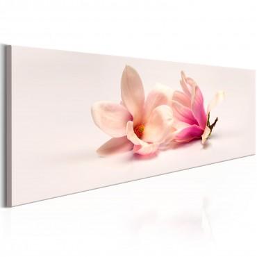 Cuadro - Beautiful Magnolias
