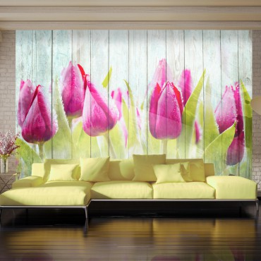 Fotomural - Tulipanes en...