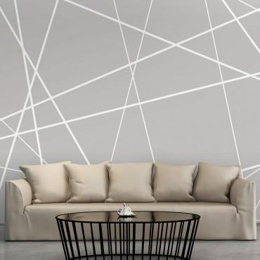 Fotomural - Modern Cobweb